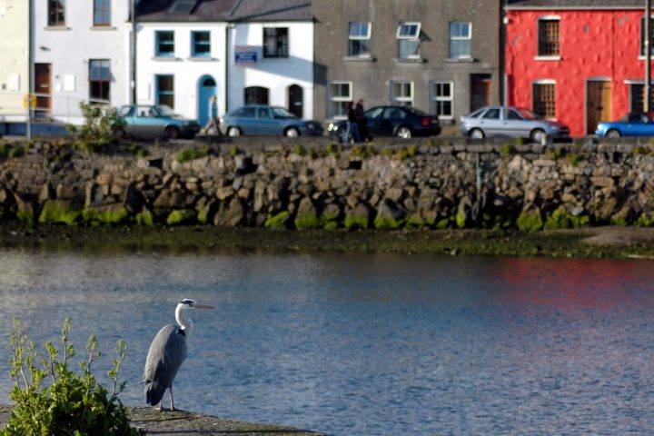 galway_190509_005